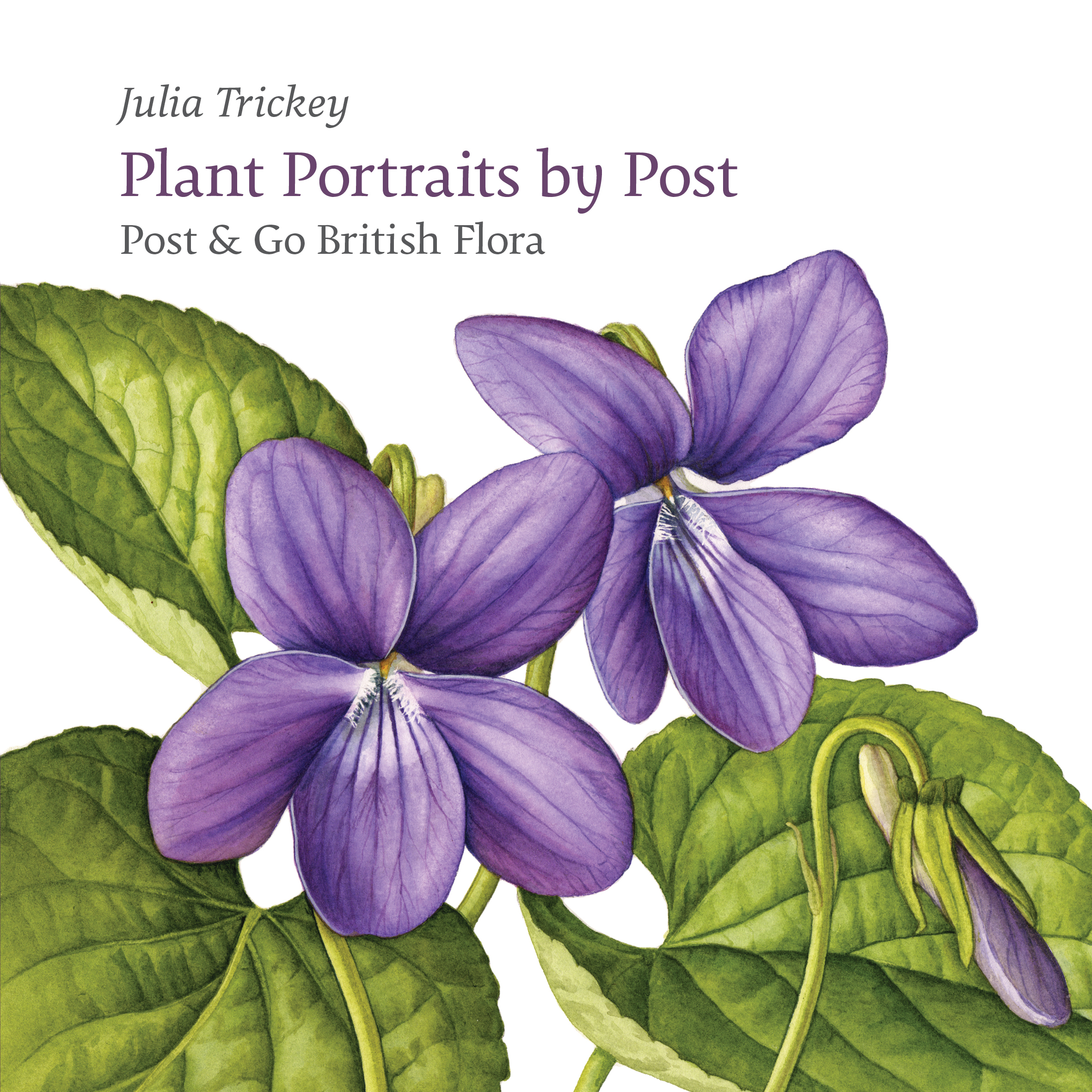Plant Portraits by Post by Julia Trickey